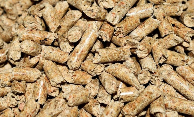 Photo of Best Smoker Pellets in 2021 Reviewed